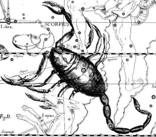 скорпион знак зодиака совместимость