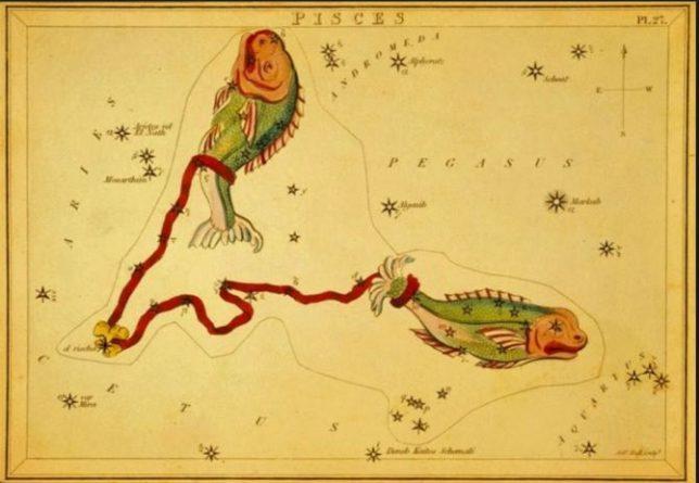 рыбы знак зодиака совместимость