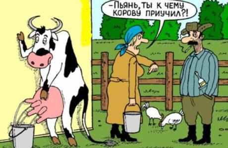 анекдоты в картинках смешные до слез взрослые