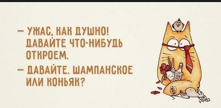 анекдоты в картинках с надписями смешные