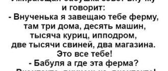 Отборный анекдот из России