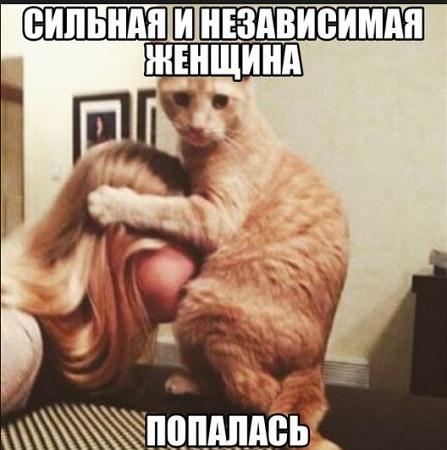 фото приколы смешные до слез очень новые с надписями про животных