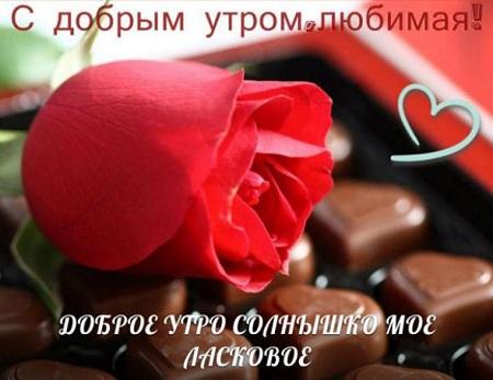 красивые букеты цветов доброе утро