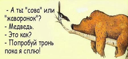 смешные анекдоты о животных